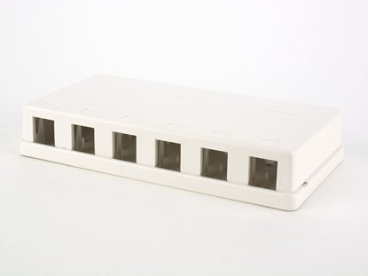 Picture of 6 Port Surface Mount Box - White