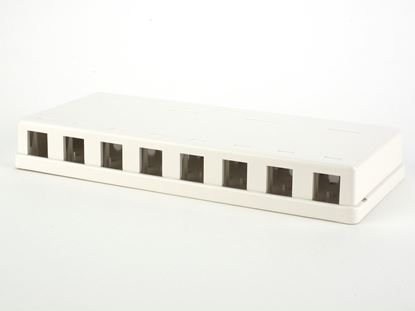 Picture of 8 Port Surface Mount Box - White