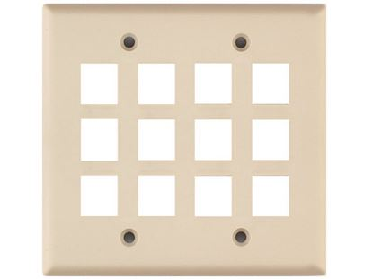 Picture of 12 Port Keystone Faceplate - Dual Gang - Ivory